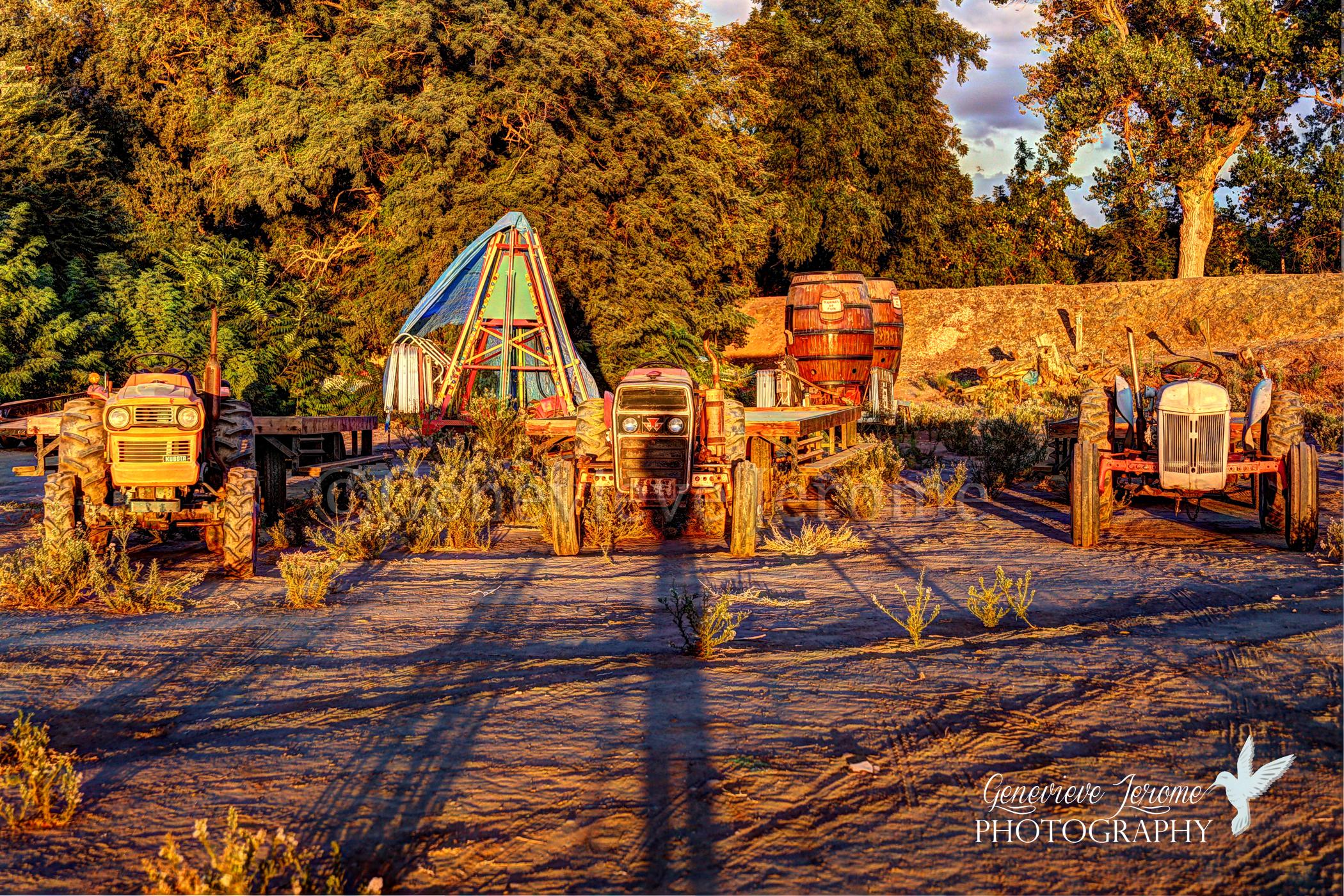 ©GJPHOTO13Carnival Sunset.jpg