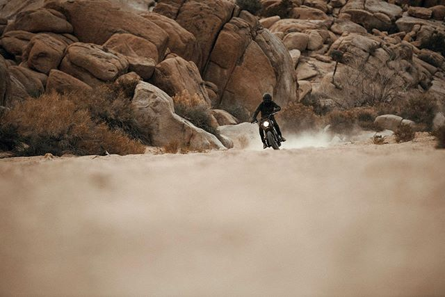"""We wanted to transform an air-cooled Triumph Scrambler into a true """"scrambler"""" that could take us well beyond the paved city streets of Denver and deep into the mountains and deserts of the Southwest. So, once the overhaul was finally completed, we headed out to the California desert to put it to the test on the rugged back roads and sand washes of Joshua Tree. The only thing we were looking forward to more than the process of building this bike was actually taking it out and getting it dirty. And it rode like a dream, just like we had imagined.  Check out the build and read the story featured in Volume 014 and posted online in the Journal at readmeta.com.  Photo by @deanbradshaw  #readmeta #ALifeWellRidden"""