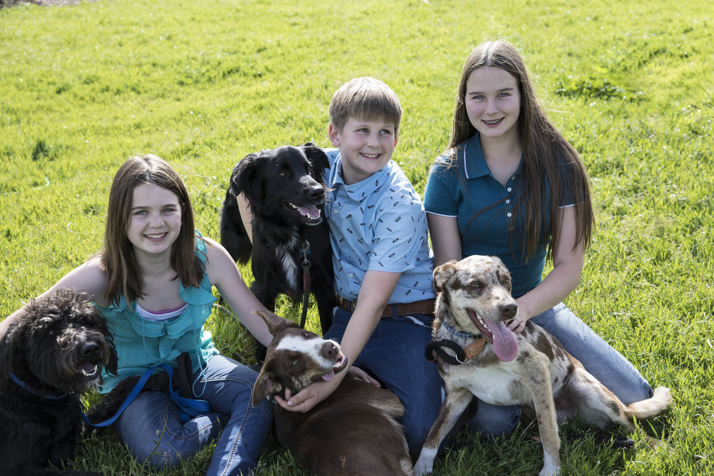 Juliet, Jake and Jacalyn Kaufman often accompany Dr. Kaufman on his practice. The dogs stay at home.