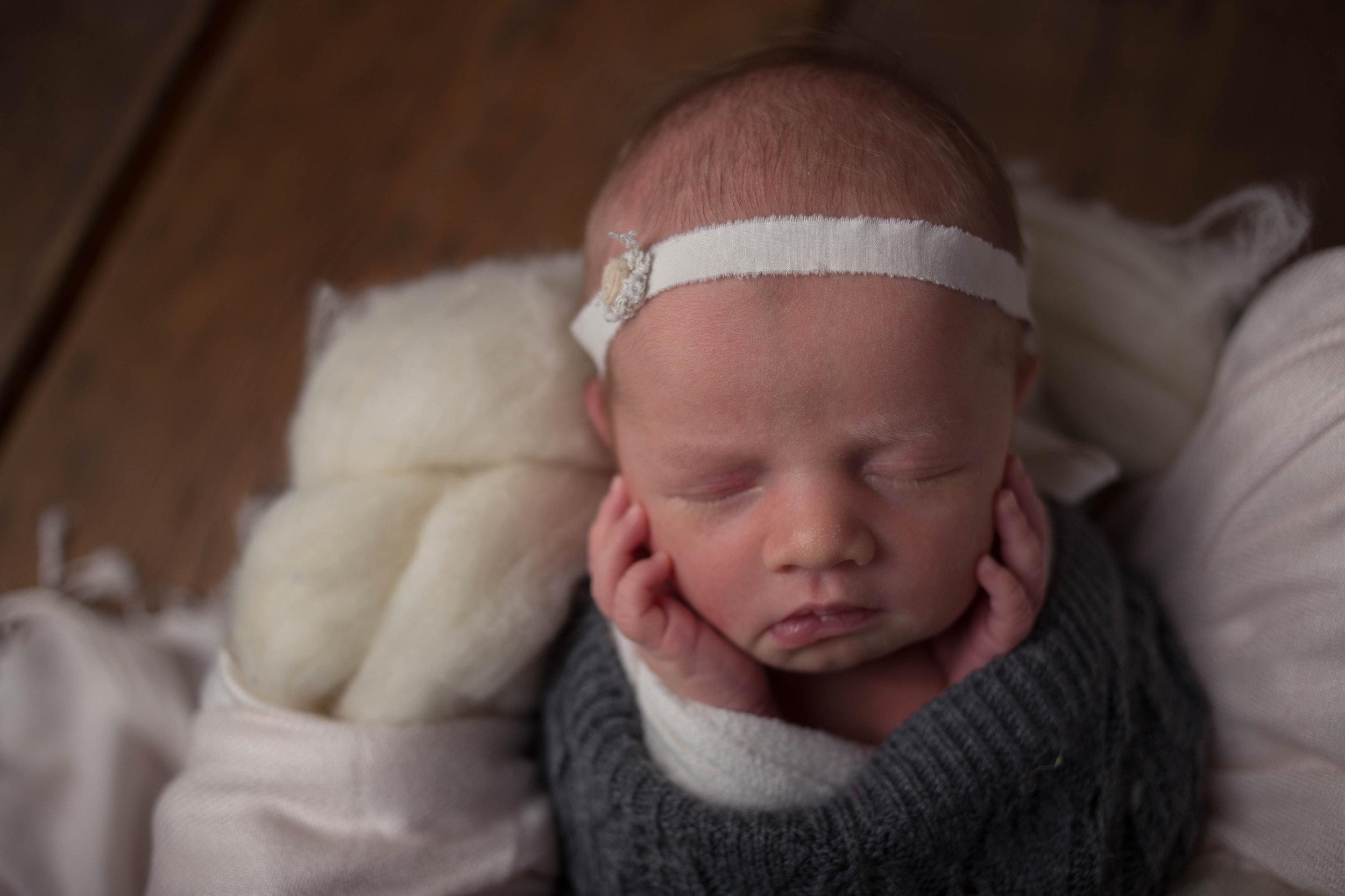 Studiofotografie  sioux falls newborn photographer  sioux falls newborn photographers  newborn photography