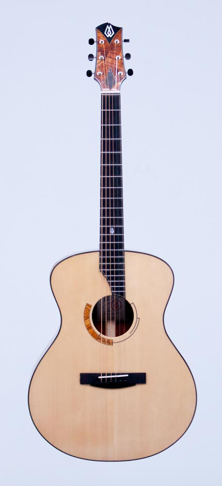 Guitar 1 WS Alt _.jpg