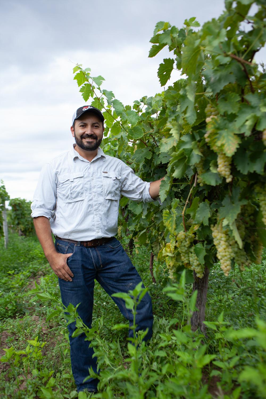 Helmut Kohlberg, a third-generation family owner/wine-maker.