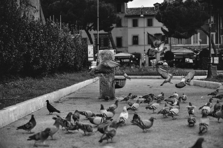 Giulia+Daniele90.jpg