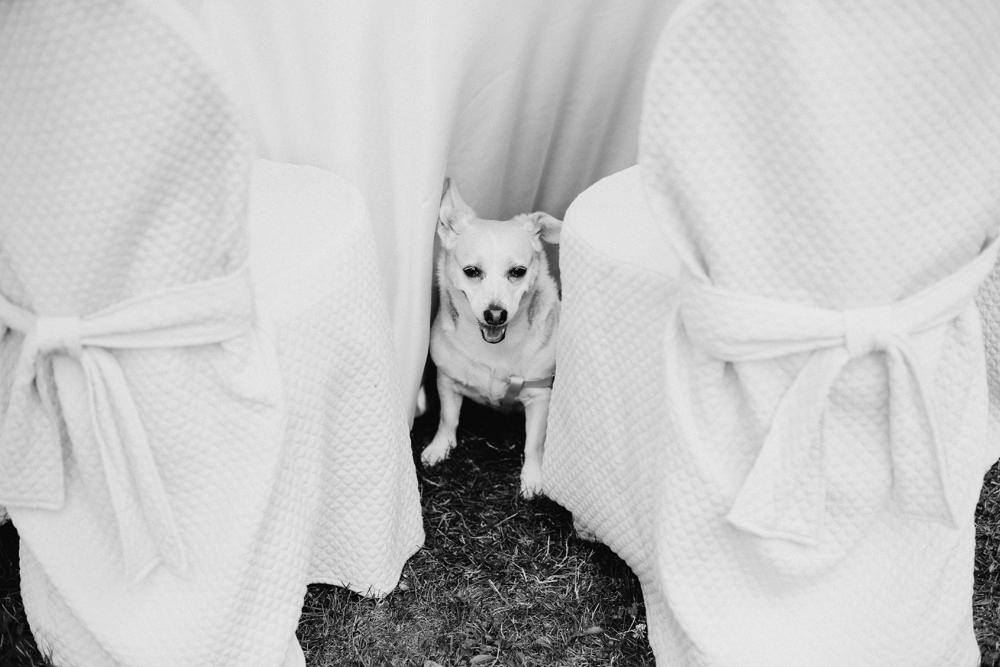 Gloria_Umberto_Landvphotography_wedding_borgodellarocca_0147.jpg