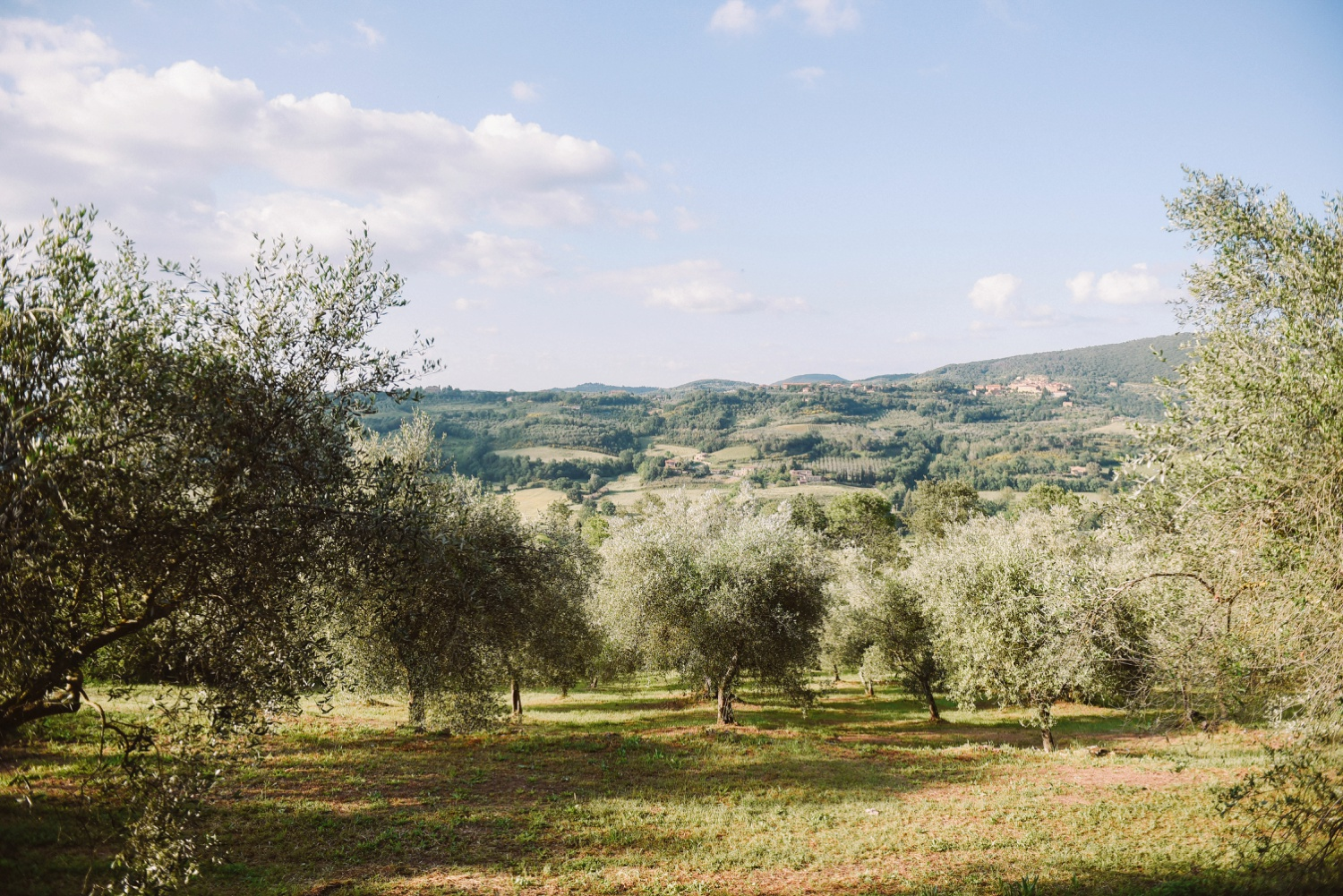 landvphotography_wedding_photographer_tuscany_0008.jpg