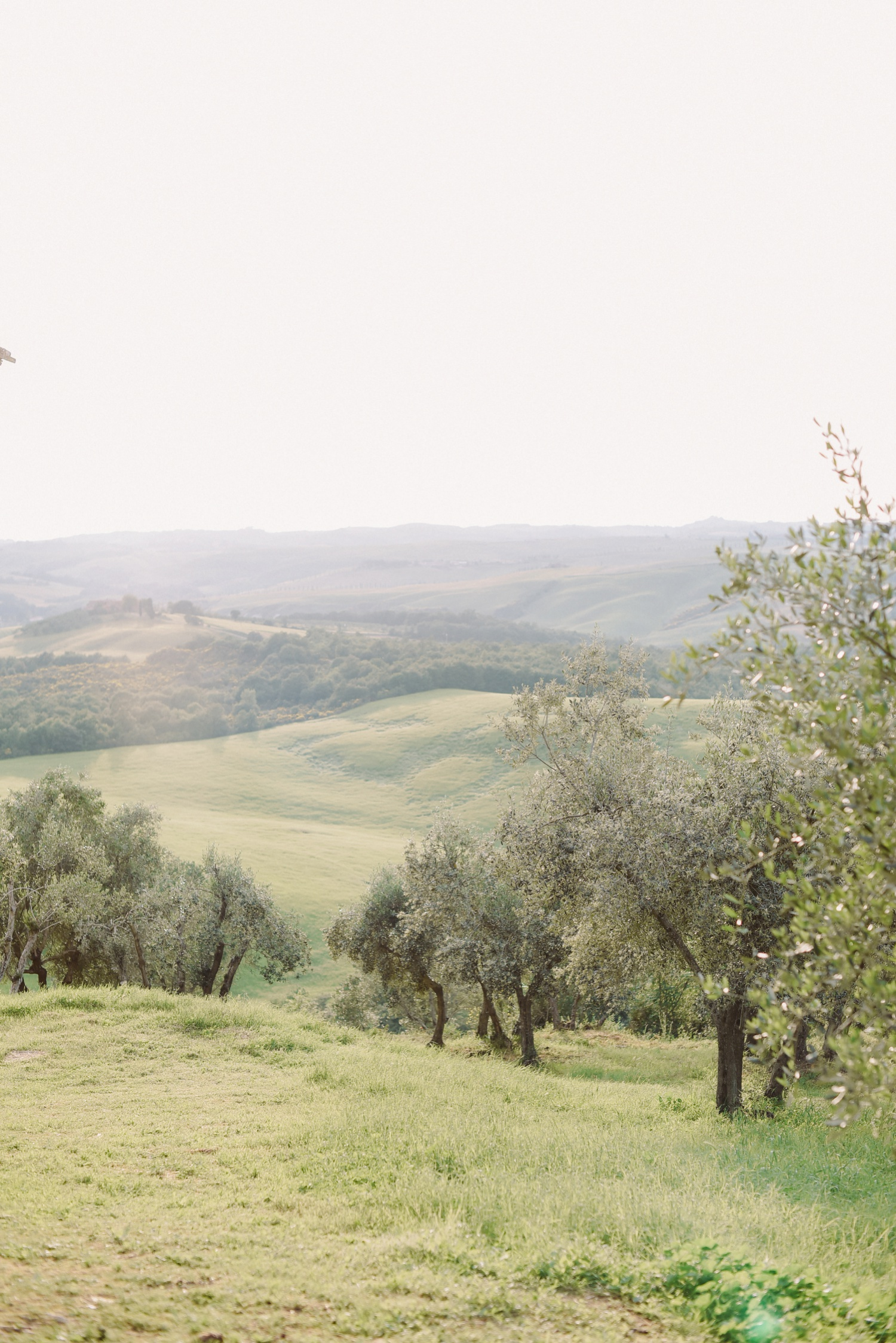 landvphotography_wedding_photographer_tuscany_0091.jpg