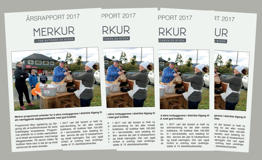Årsrapport 2017 collage.jpg