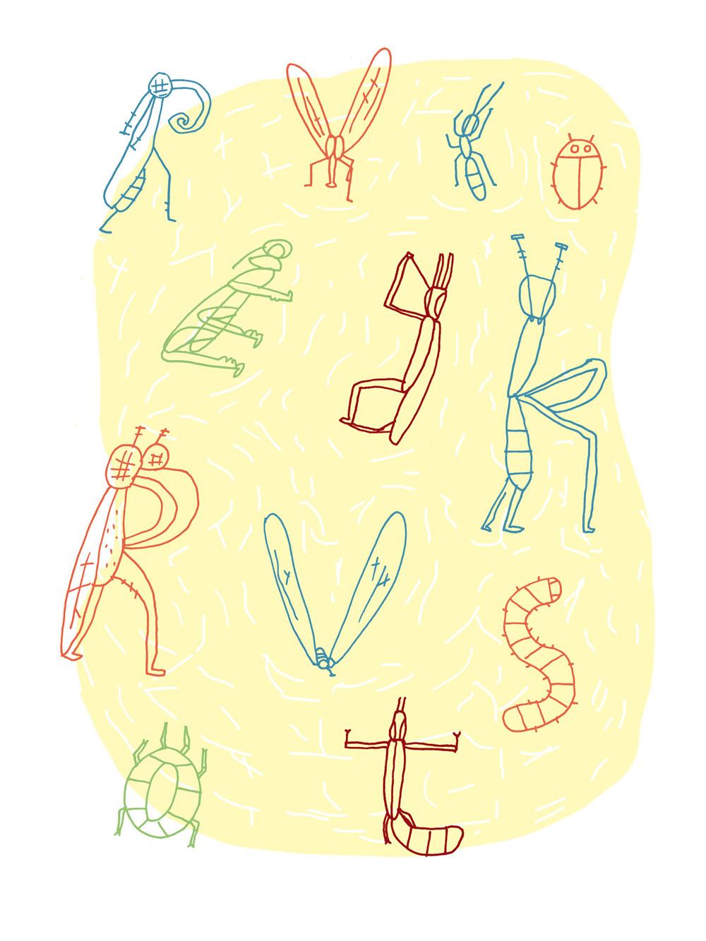 strooisel insectenv2 .jpg