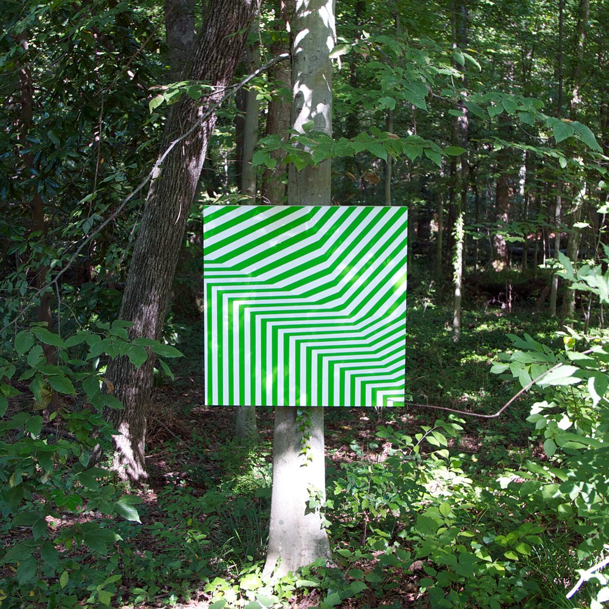 byrd_transpose32_woods_o.jpg