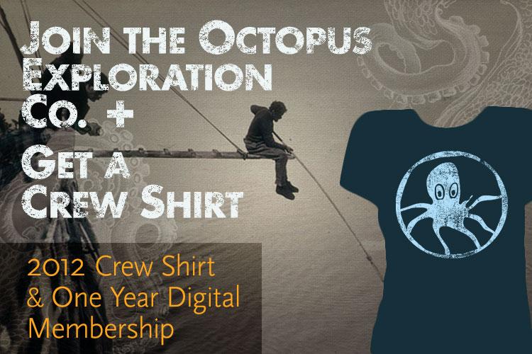 2012-shirt-1-yr-digital