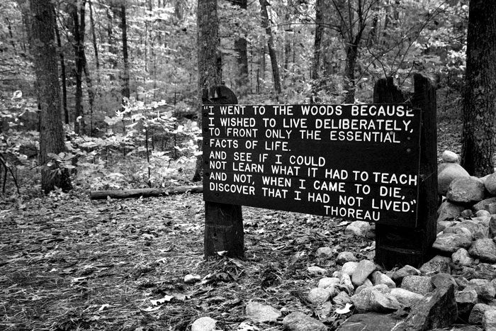I went to the woods because I wanted to live deliberately