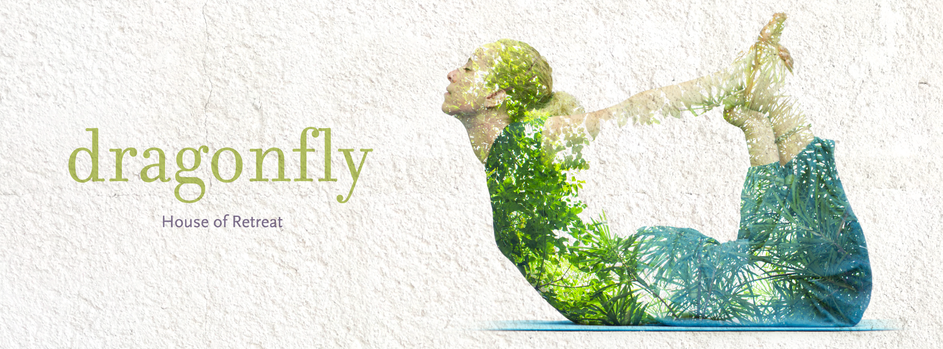 Dragonfly---Yoga-Therapy---Covers.png