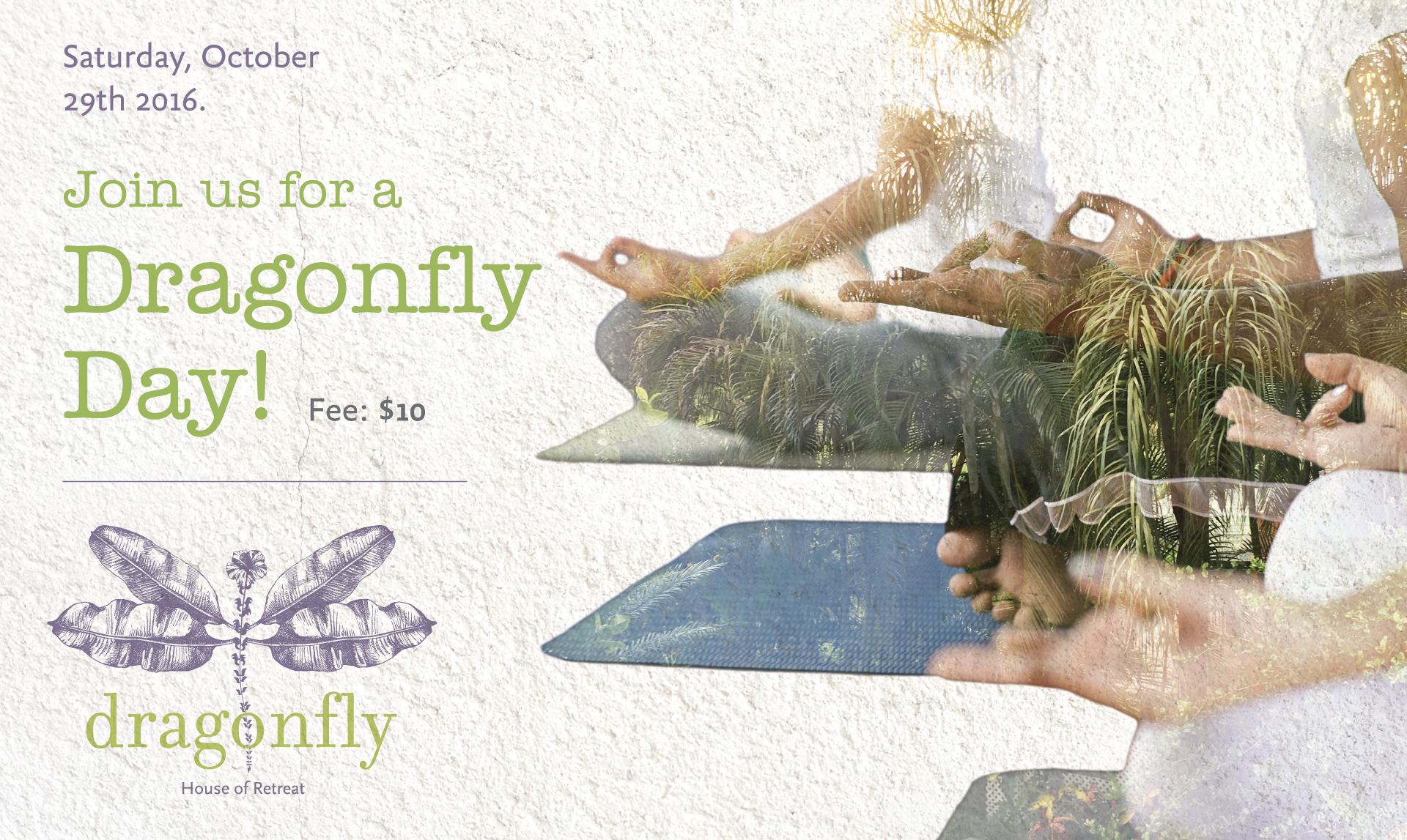 Dragonfly---Yoga-Therapy-3.png