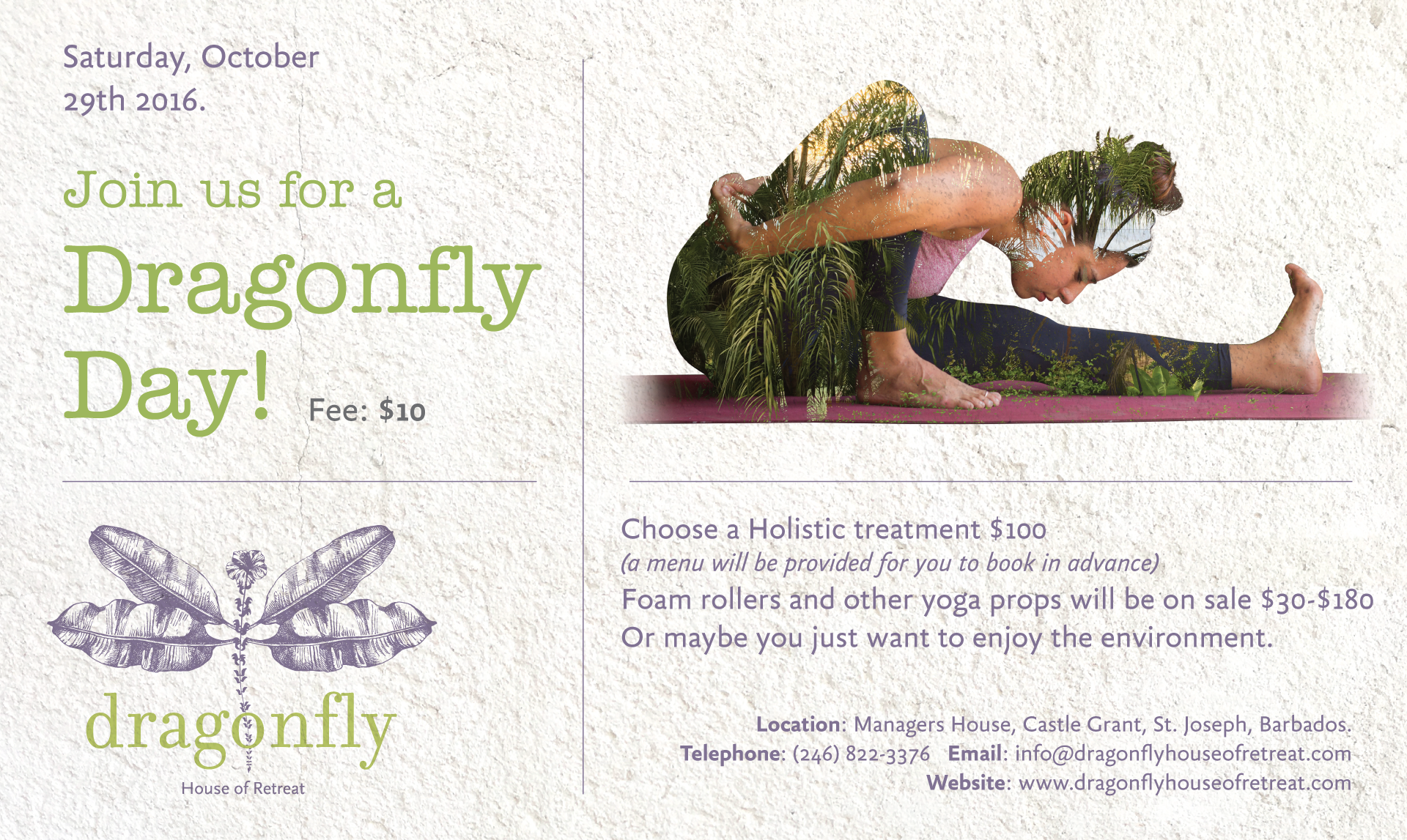 Dragonfly---Yoga-Therapy-1.png