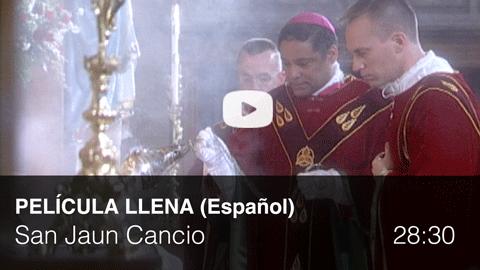 full-spanish-bishop.png