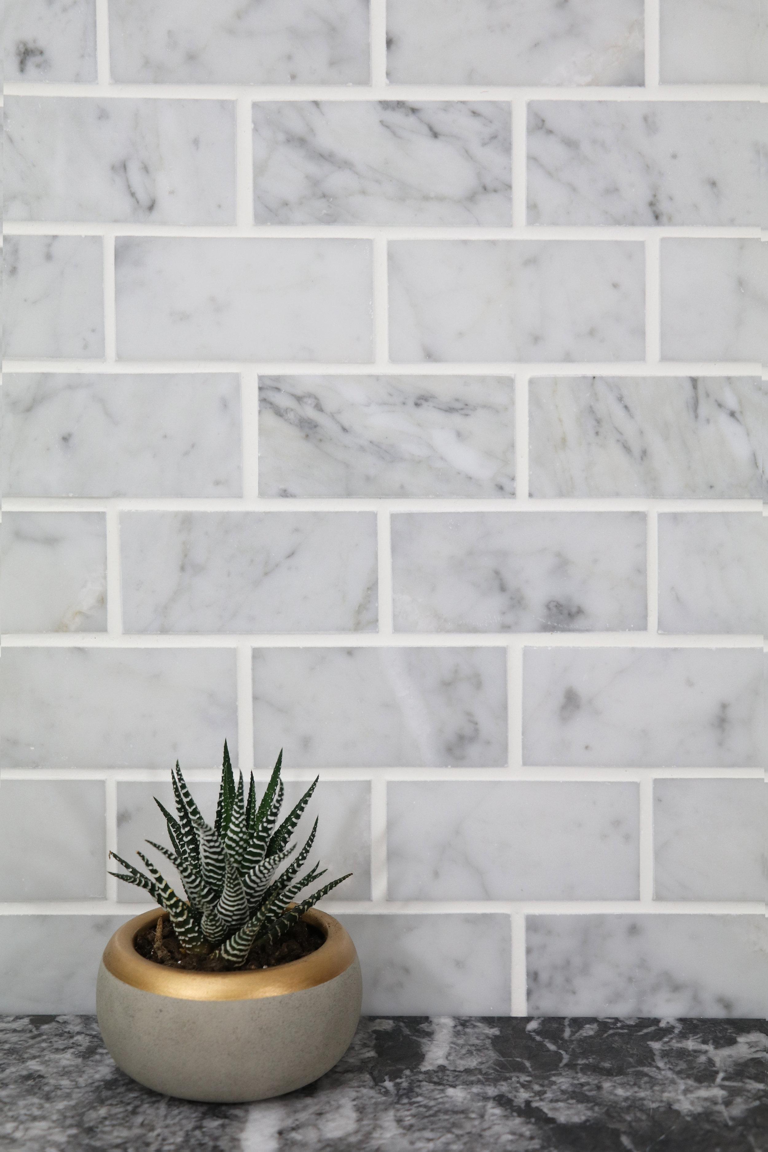 "Venatino Carrara 2""x4"" Brick"