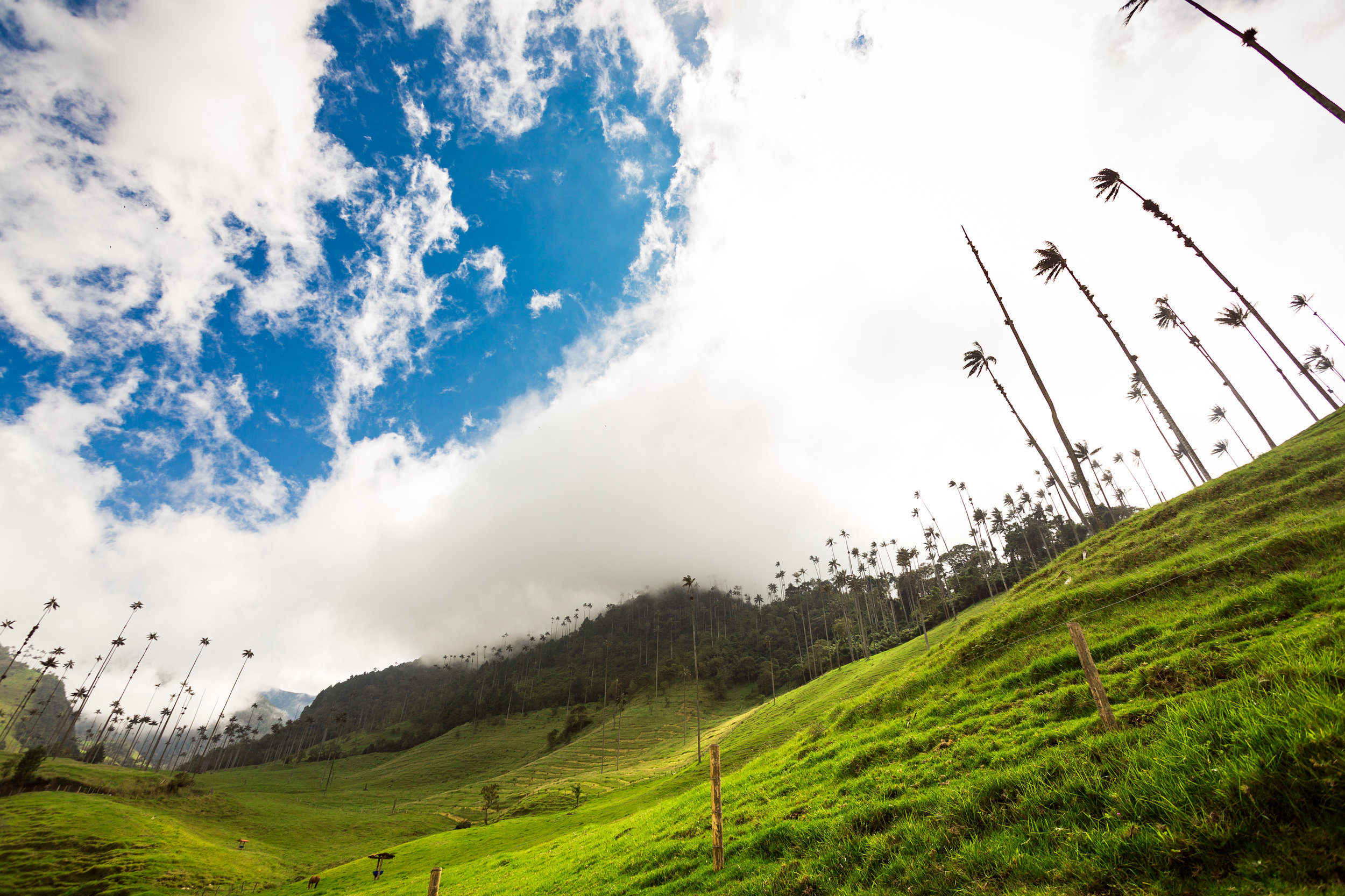 Colombia-157.jpg