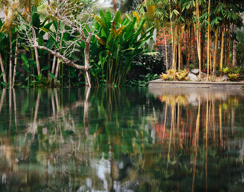 Jungle Fish resort north of Ubud