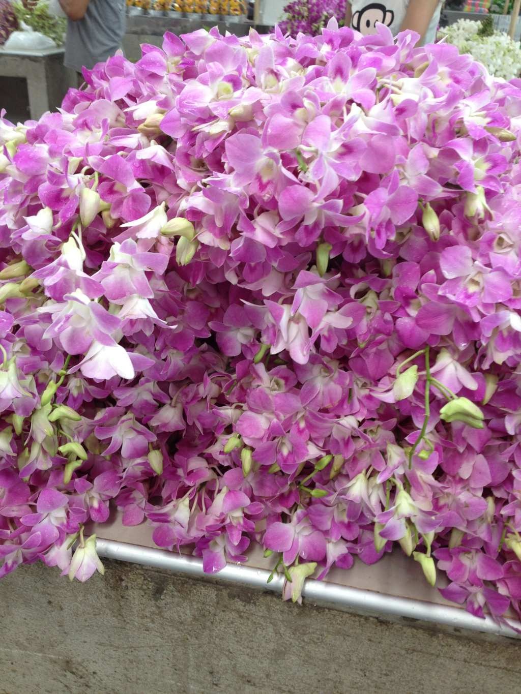 Pile of Orchids–$1 USD for a large bunch.