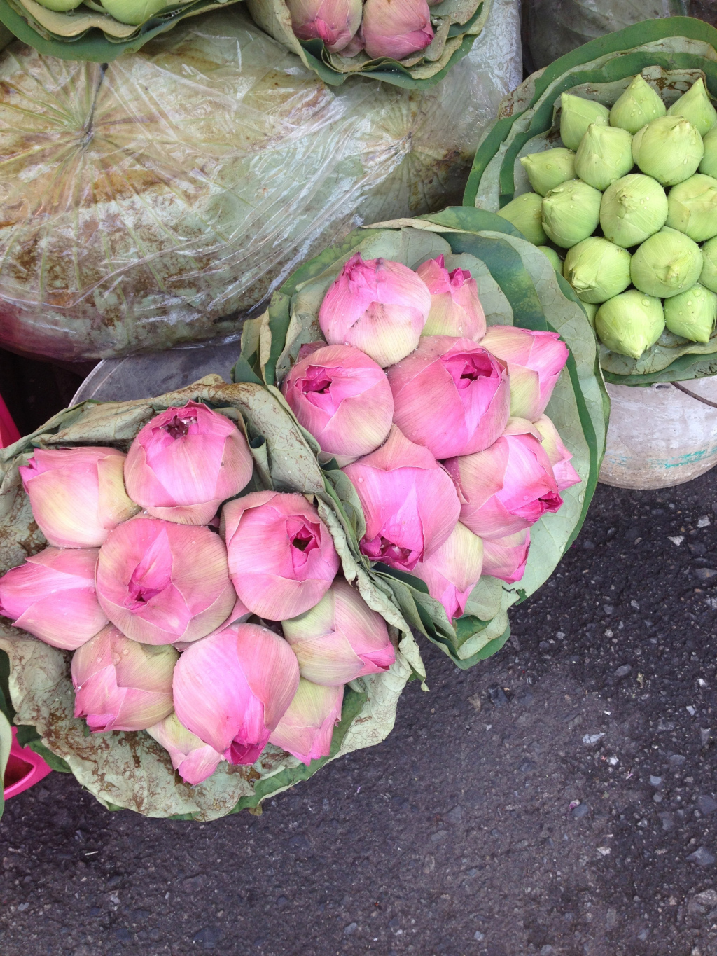 Fresh Lotus Flowers–I'd never seen these in such abundance.