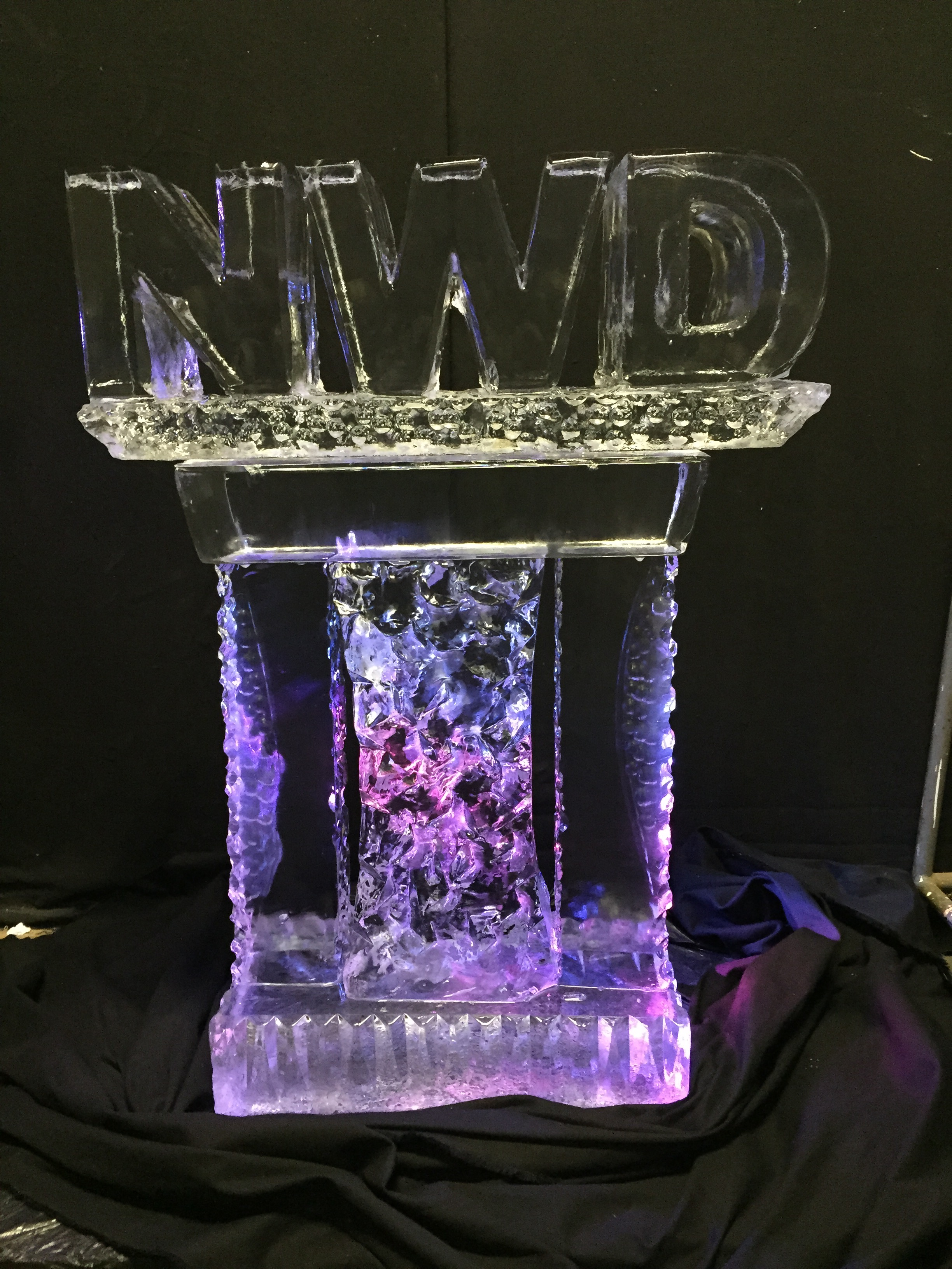 NWD Logo_ Ice Sculpture.jpg