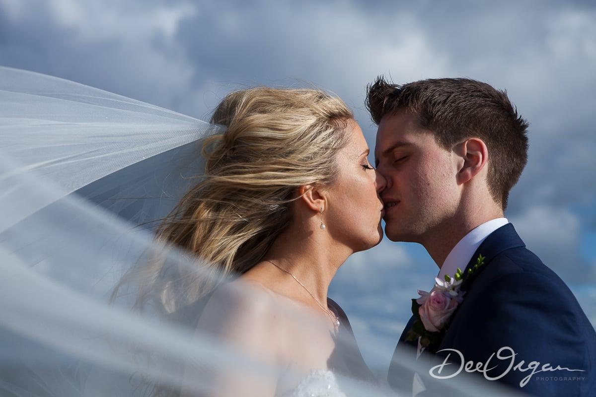 Dee Organ Photography-554-9803.jpg