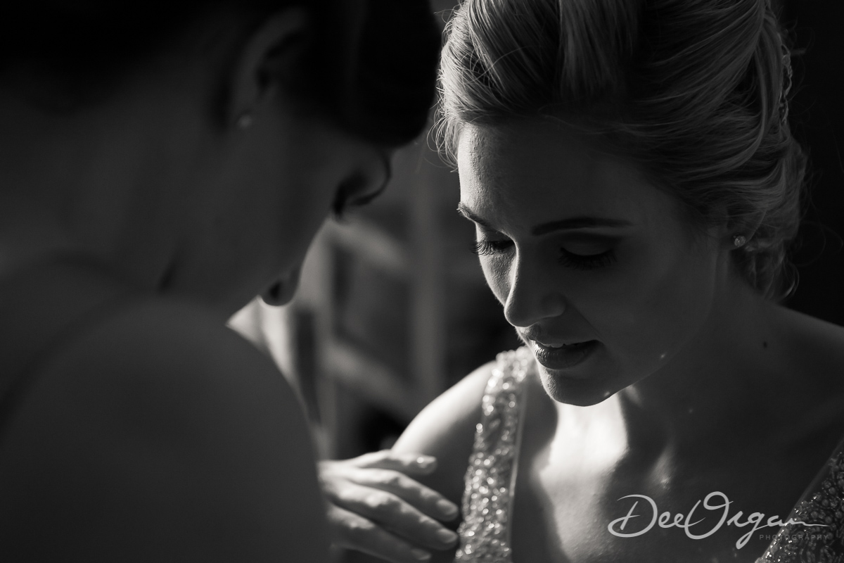 Dee Organ Photography-090-7327.jpg