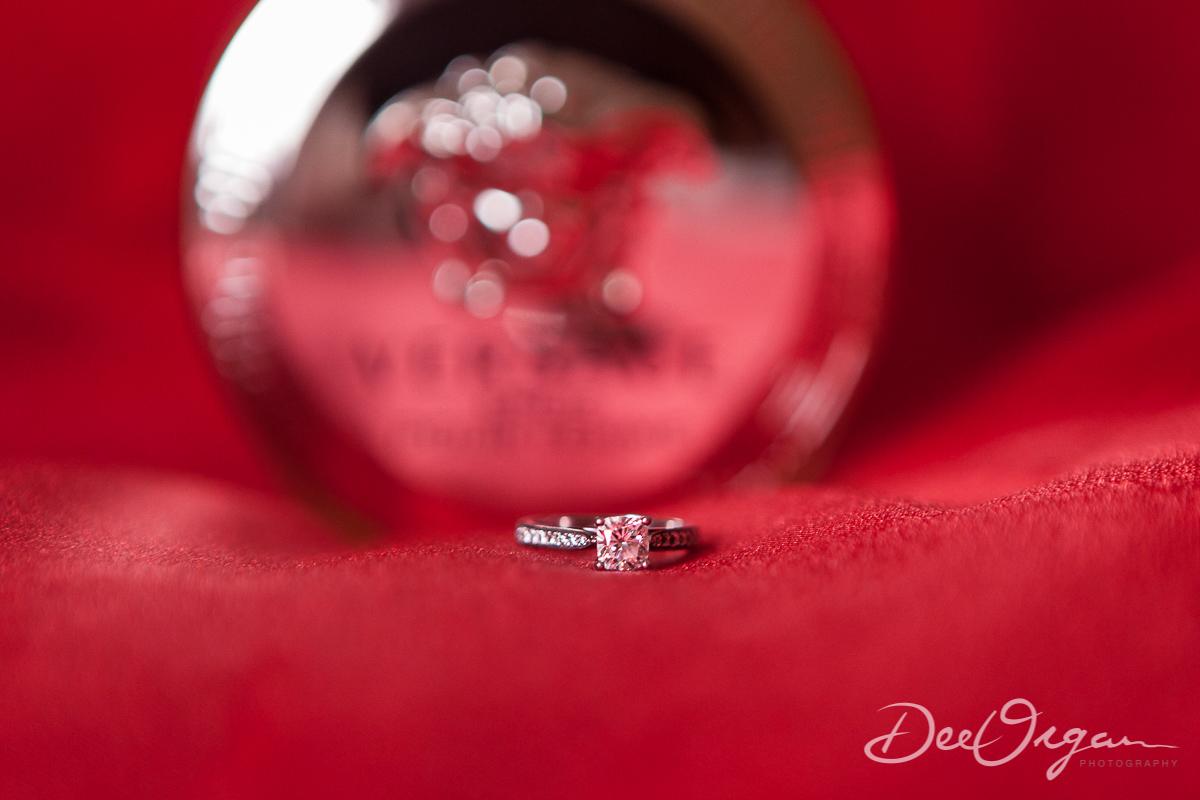 Dee Organ Photography-060-7201.jpg