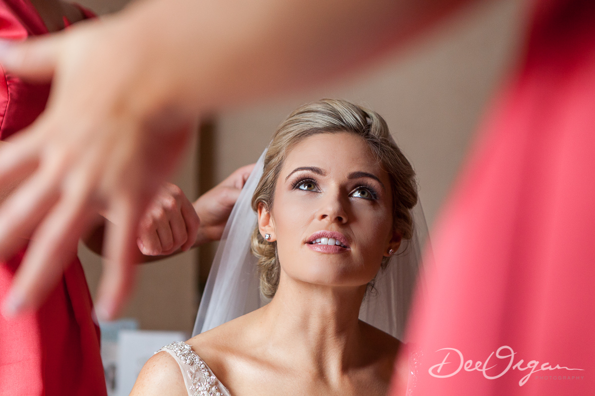 Dee Organ Photography-123-7450.jpg