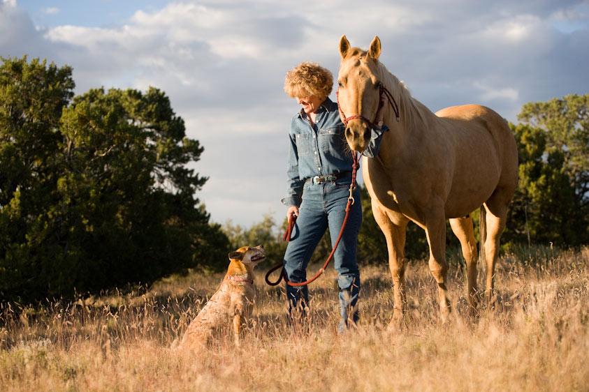 Horse_Photography-2.jpg