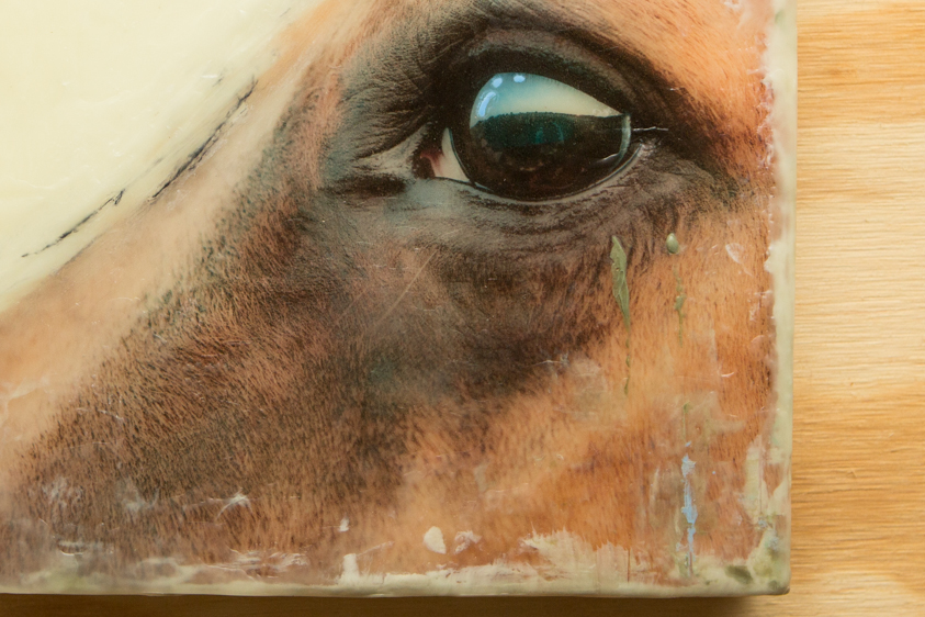 Horse#1-001-8x8-4-2.jpg