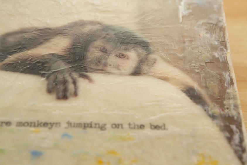 Monkey01.01125.20131212-2.jpg