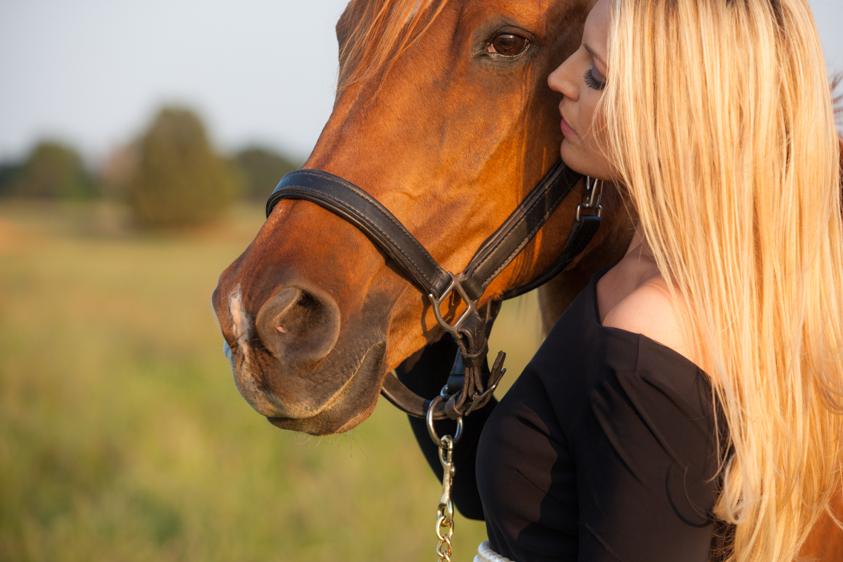 Horse Portraits-13.jpg
