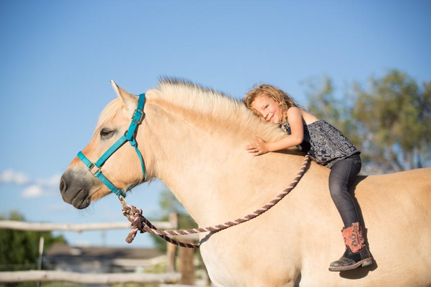 Horse Portraits-17.jpg