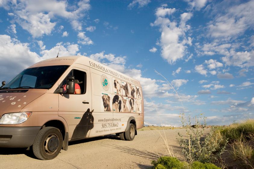 Animal Welfare Photography-16.jpg