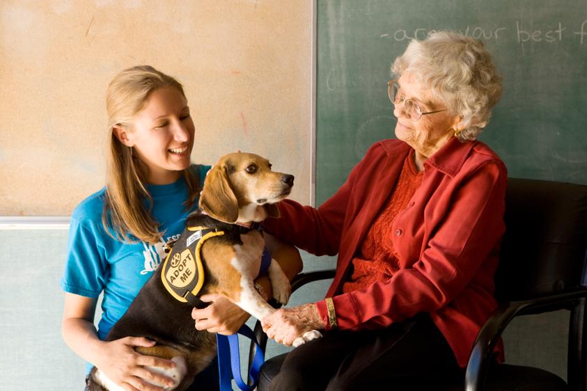 Animal Welfare Photography-17.jpg