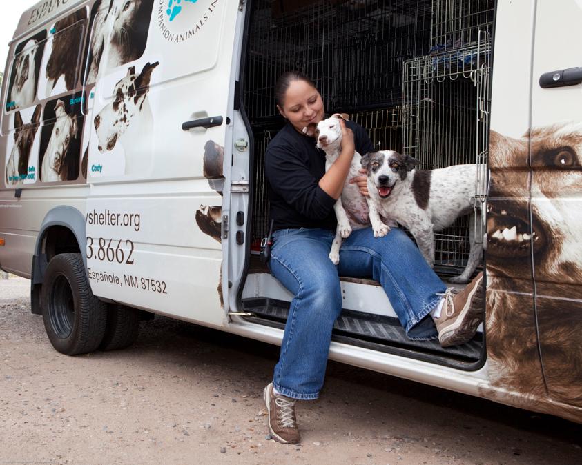 Animal Welfare Photography-21.jpg