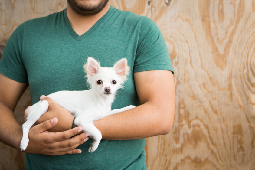 Animal Welfare Photography-23.jpg