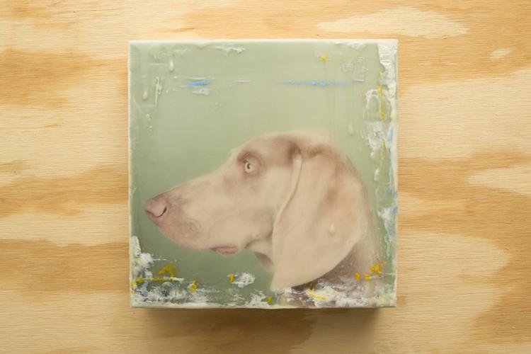 Dog01.03125.20131210-3.jpg
