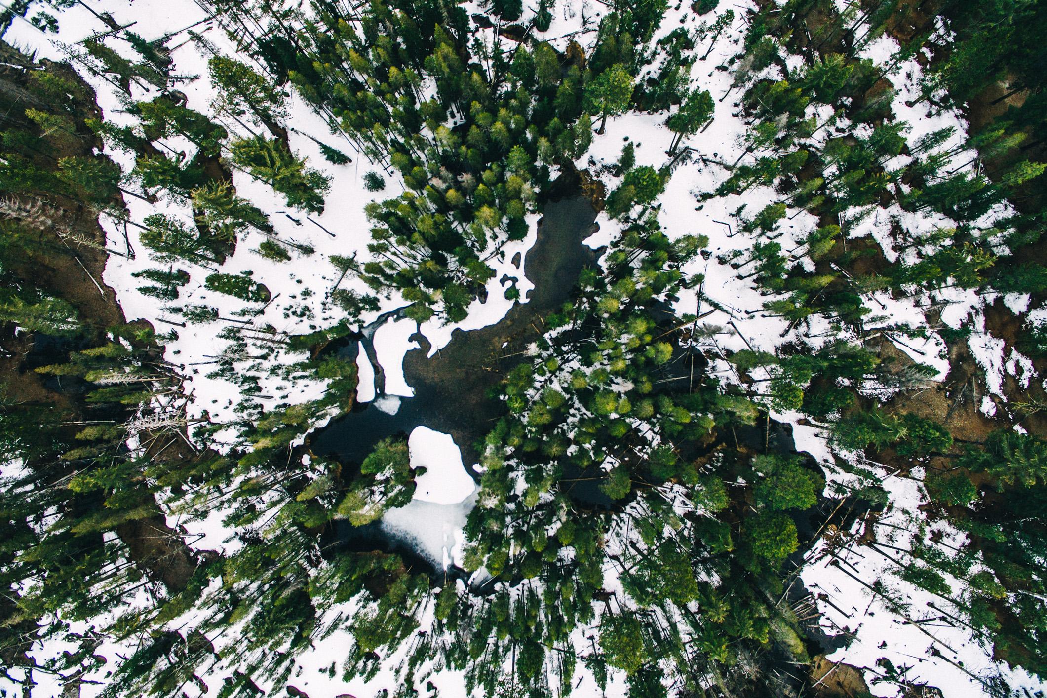 nature-72.jpg