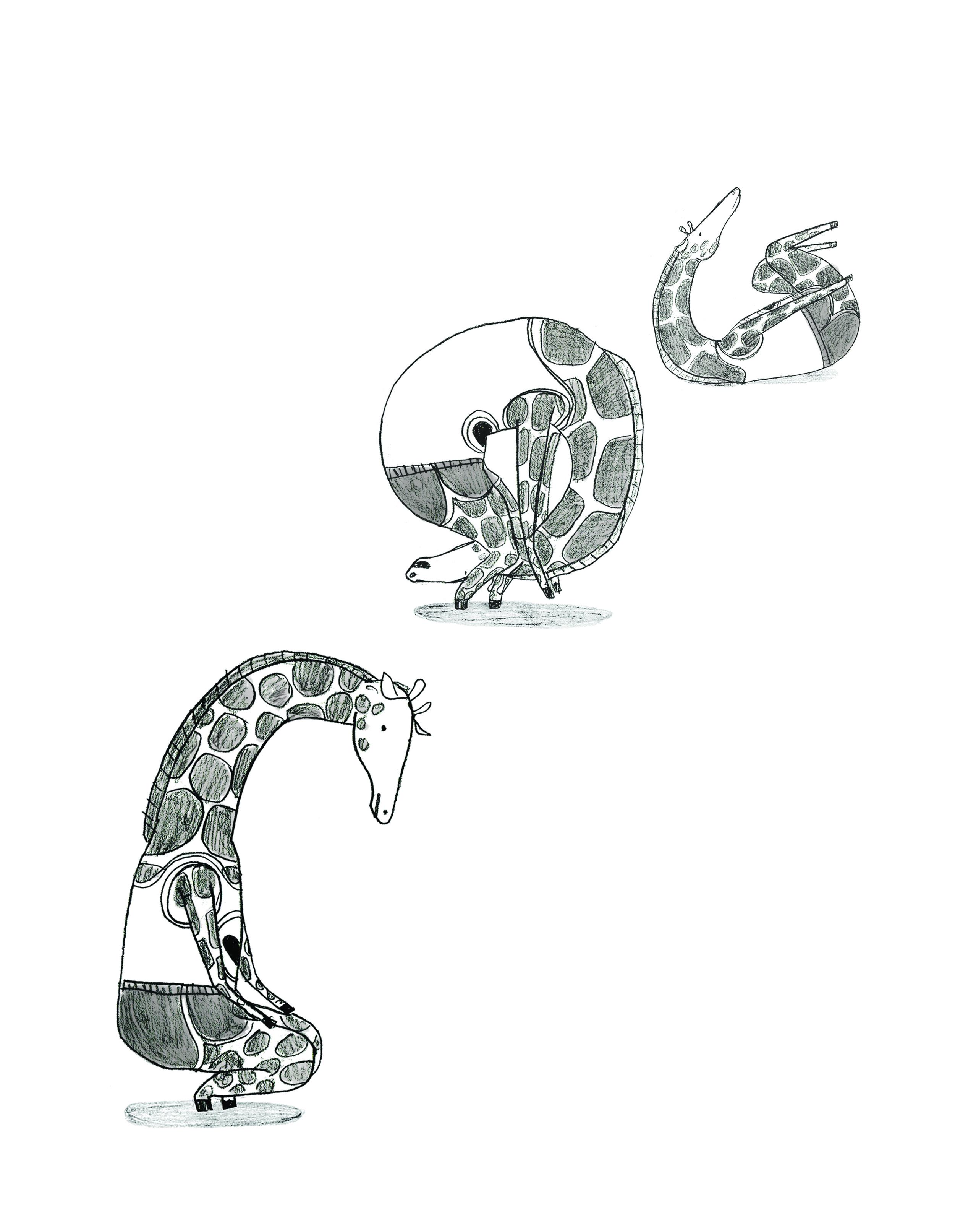 giraffe somersault.jpg