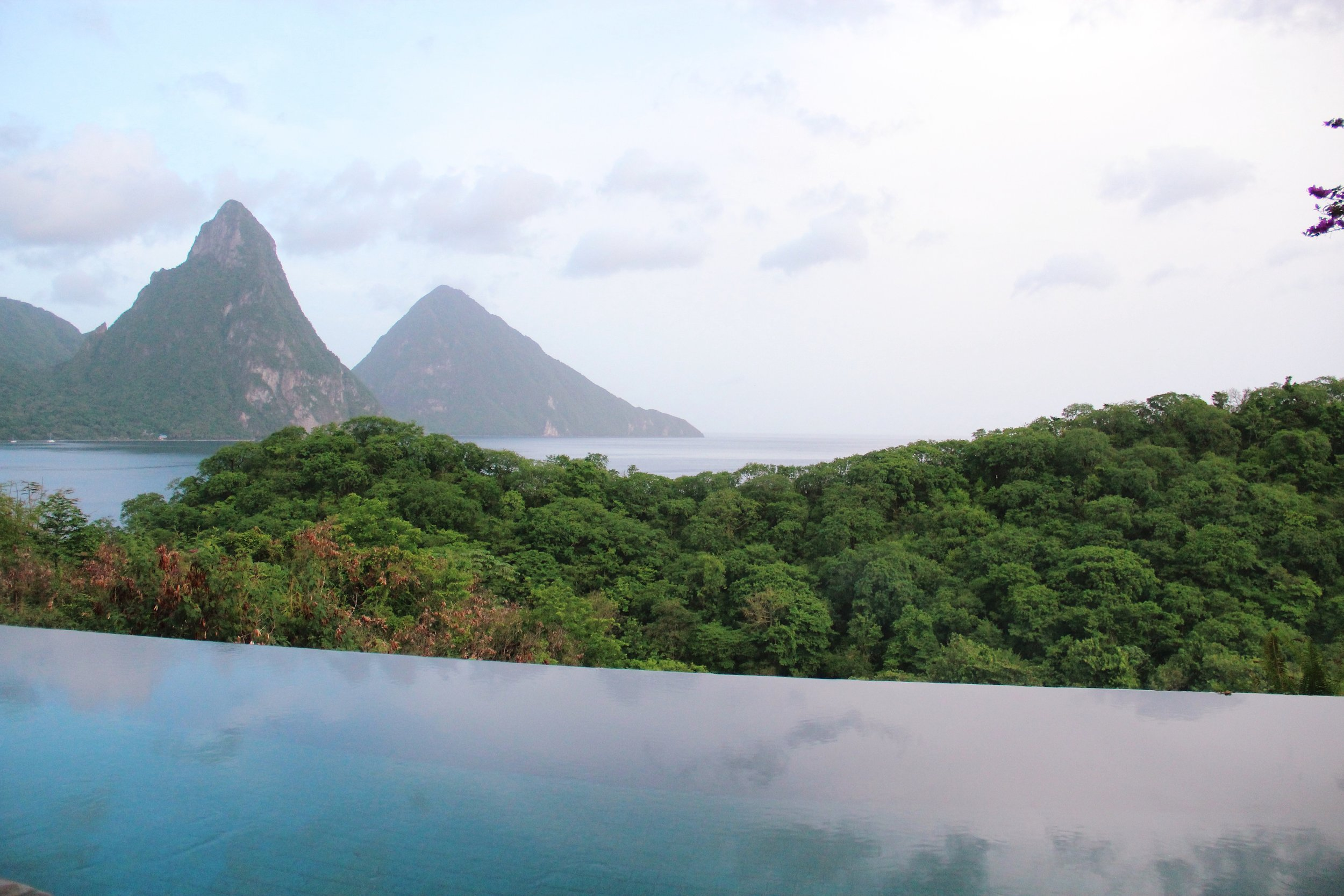Infinity pool and view of the Pitons from room number JA4.