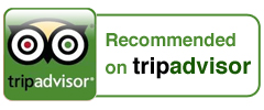 TripAdvisor Rooted Vine Tours