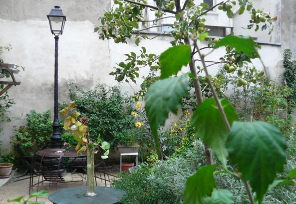 DE L'OR VERT DANS NOS VILLES, posté par  Un week-end en famille  le 28/10/10   Au jardin ,  En balade