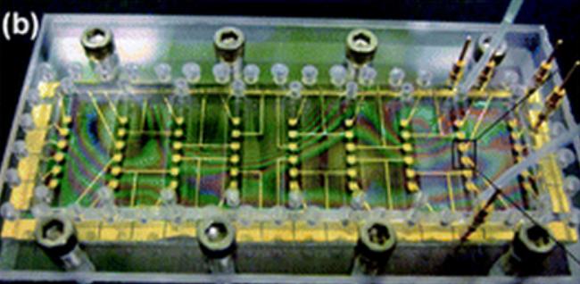 Image: exemple de dispositif microfluidique utilisé pour le traitement personnalisé du cancer. Sources : Sanger et al. (2013) et Fernandez et al. (2010).