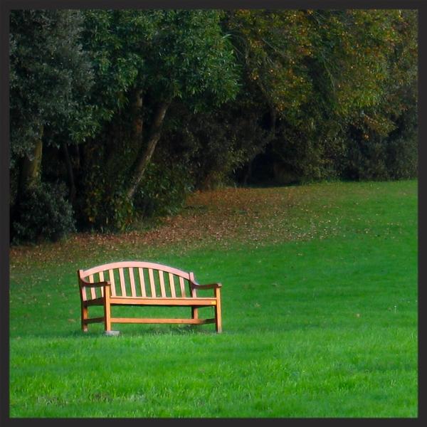 photo : Pierre guité , asseyez-vous ! par sylvie Gendreau, votre laboratoire créatif