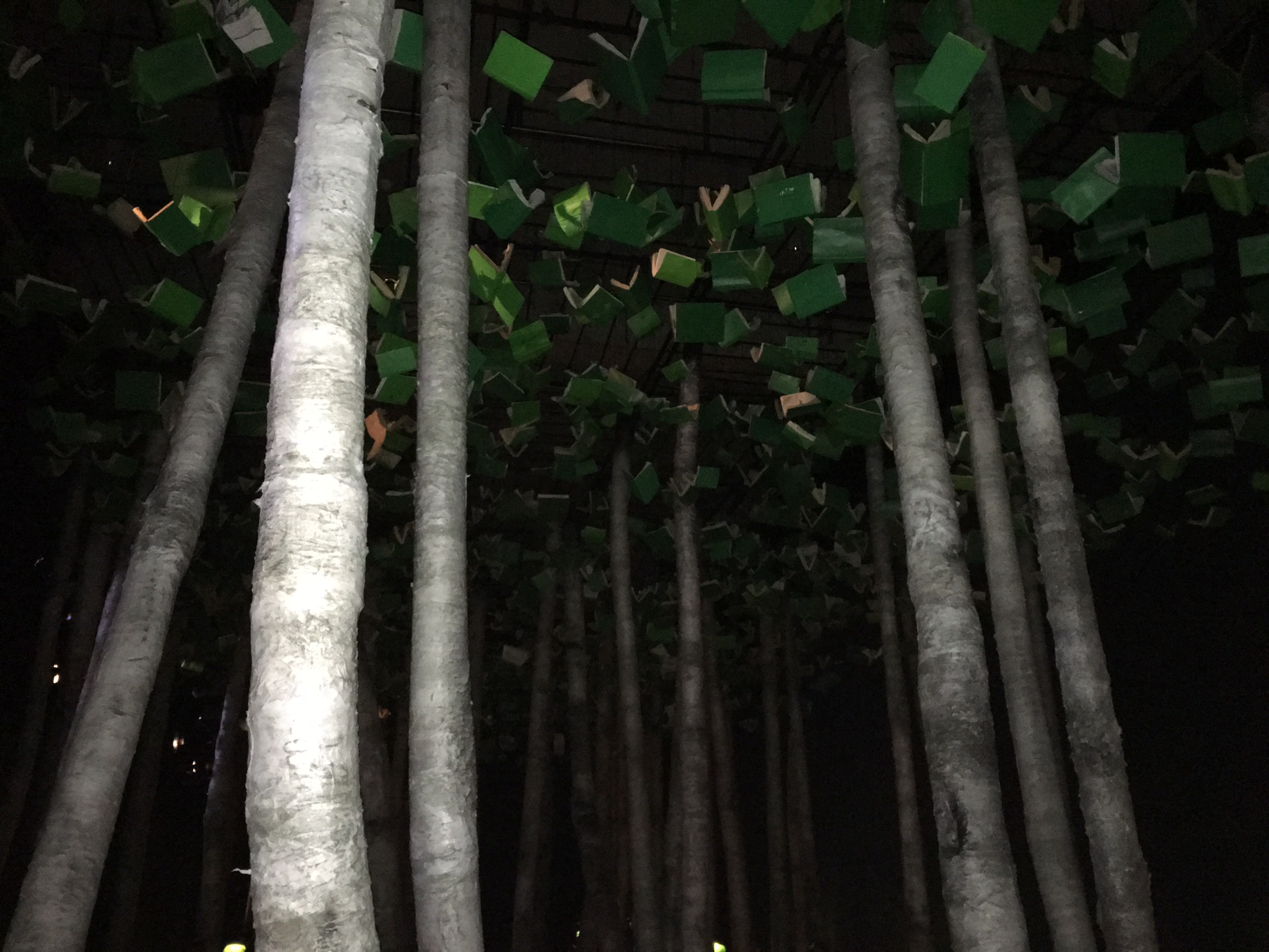 Photo de la forêt de livres imaginée par Robert Lepage pour la Grande Bibliothèque du Québec à partir des textes d'Alberto Manguel par Sylvie Gendreau, Votre laboratoire créatif.
