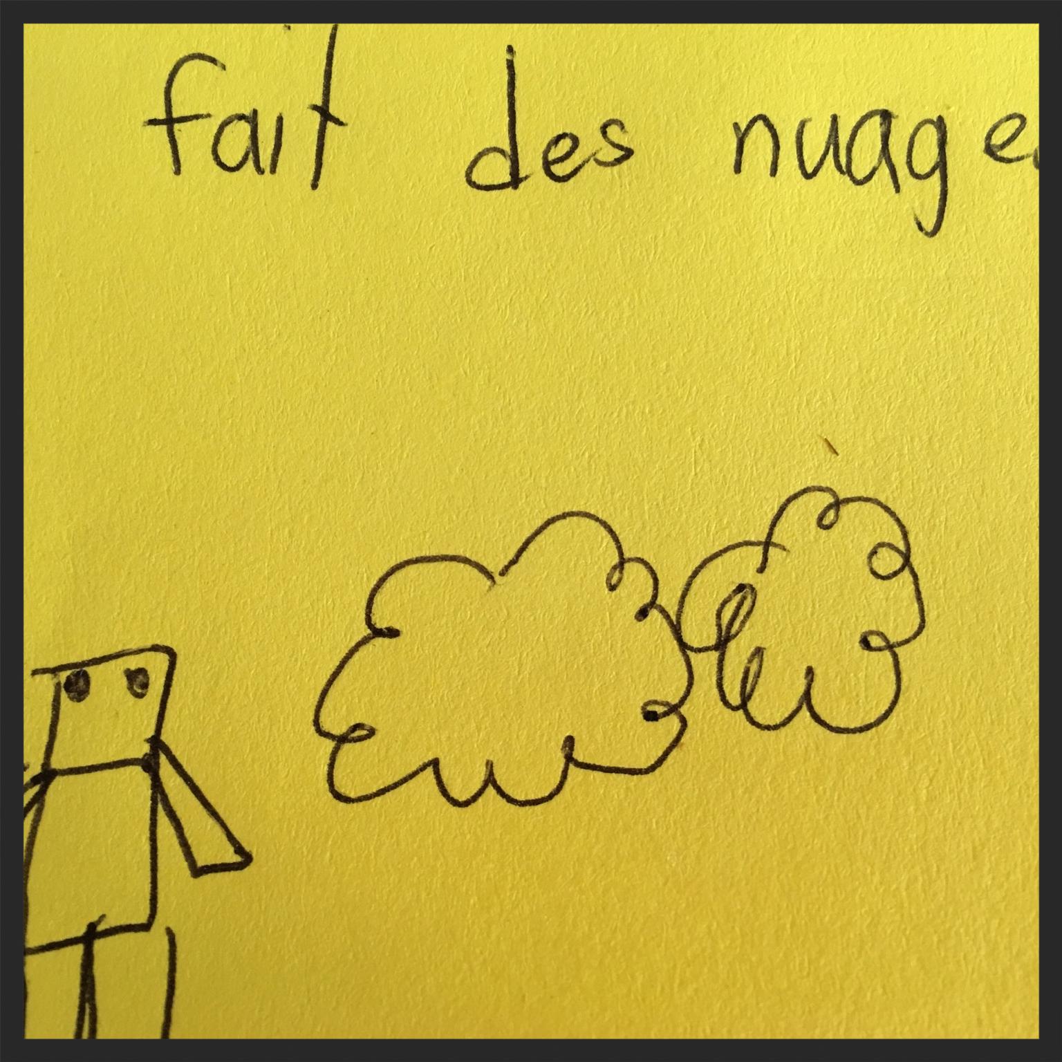 Dessins : Pierre Guité,  Bricoler comme la Nature  par Sylvie Gendreau, Le Cahiers d'exercices.