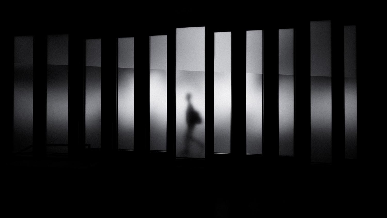 Photo : David Werbrouk