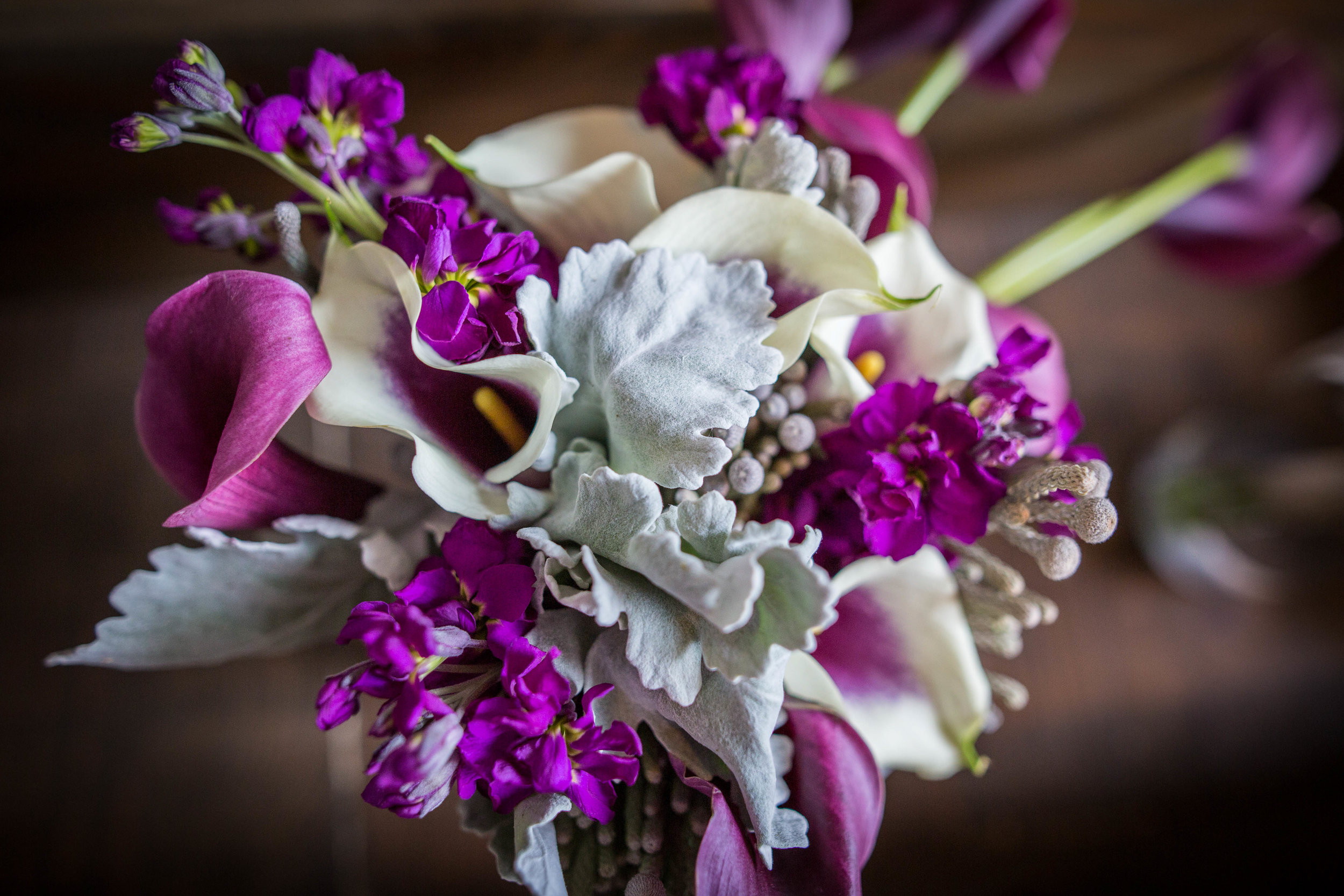 Kansas+City_Small+Wedding_Venue_Elope_Intimate_Ceremony_Constance & Carissa-001.jpg